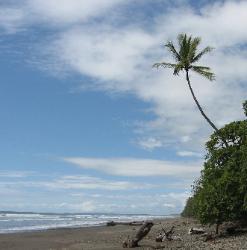 Playa Pinuela