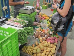 A great Saturday farmers market in Uvita